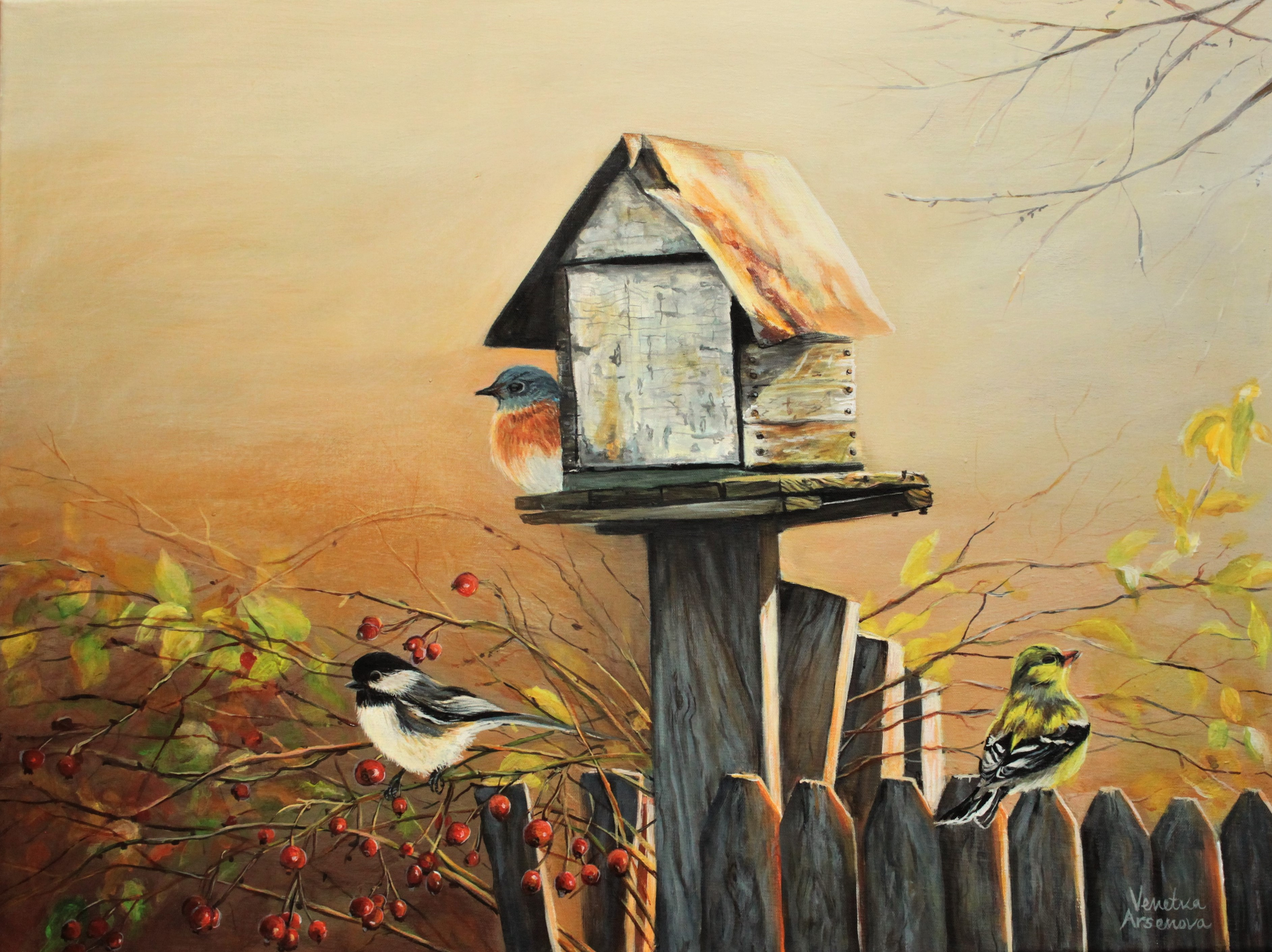 Bird House Original Country Living Landscape Fine Art By